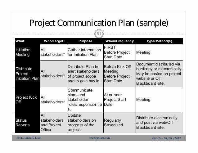 Project Management Communication Plan Template New Risk Management Profesional Presentation