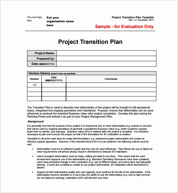 Project Management Plan Template Word Best Of 23 Project Plan Template Doc Excel Pdf