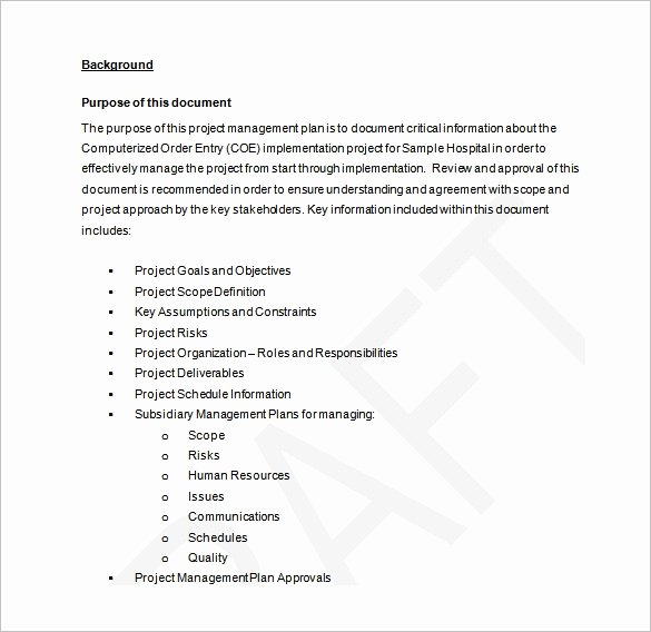 Project Management Plan Template Word Elegant Project Management Plan Template 11 Free Word Pdf
