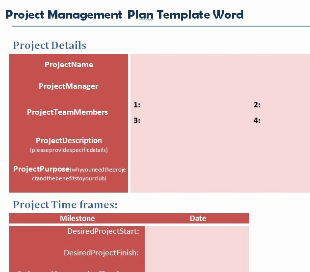 Project Management Plan Template Word Unique Professional Project Plan Template Word