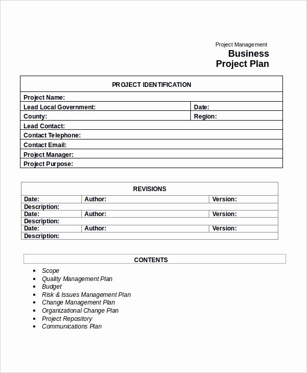 Project Plan Template Word Awesome Project Plan Template 10 Free Word Pdf Document