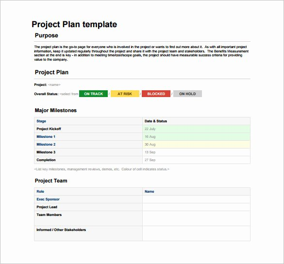 Project Plan Template Word Lovely 23 Project Plan Template Doc Excel Pdf