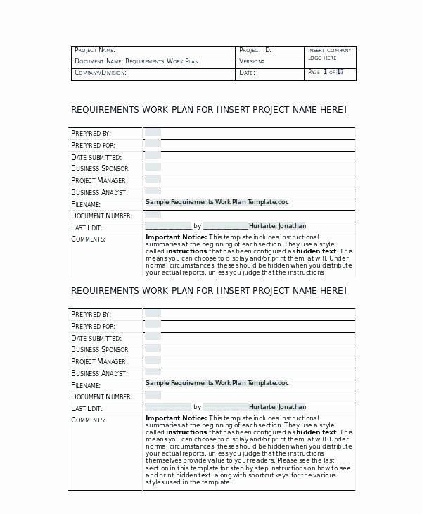 Project Work Plan Template Unique Sample Requirements Work Plan Template Project Management