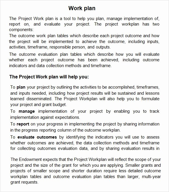Project Work Plan Template Unique Work Plan Template 13 Download Free Documents for Word