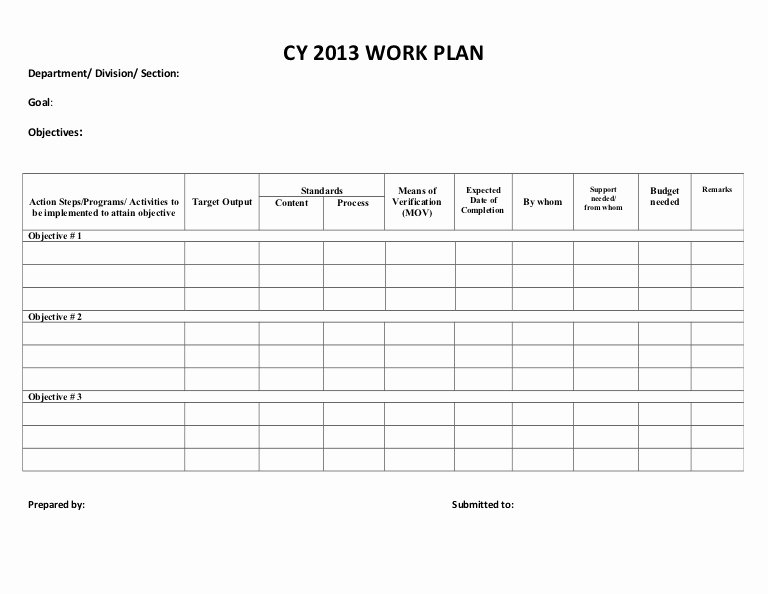 Quarterly Action Plan Template Unique Cy 2013 Work Plan Sample form