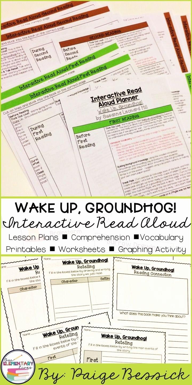Read Aloud Lesson Plan Template Beautiful Best 25 Interactive Read Aloud Ideas On Pinterest
