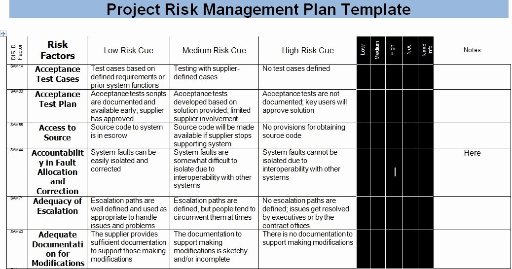 Risk Management Plan Template Best Of Risk Management Template