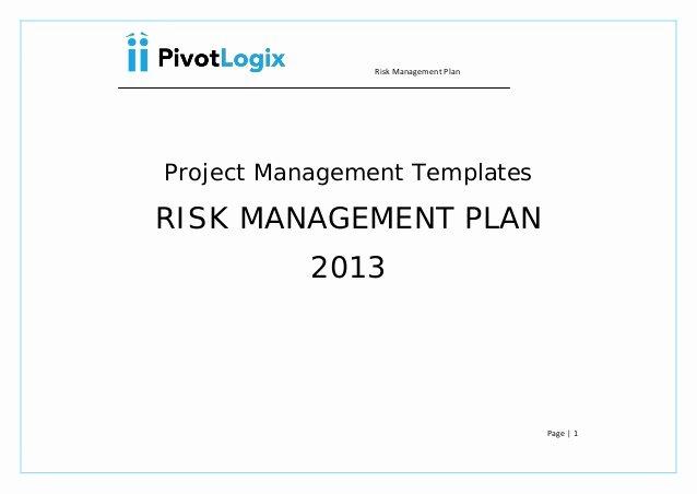 Risk Management Plan Template Doc Beautiful Pmp Risk Management Plan & Template