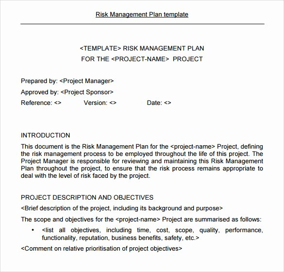 Risk Management Plan Template Inspirational 8 Risk Management Plan Templates to Free Download