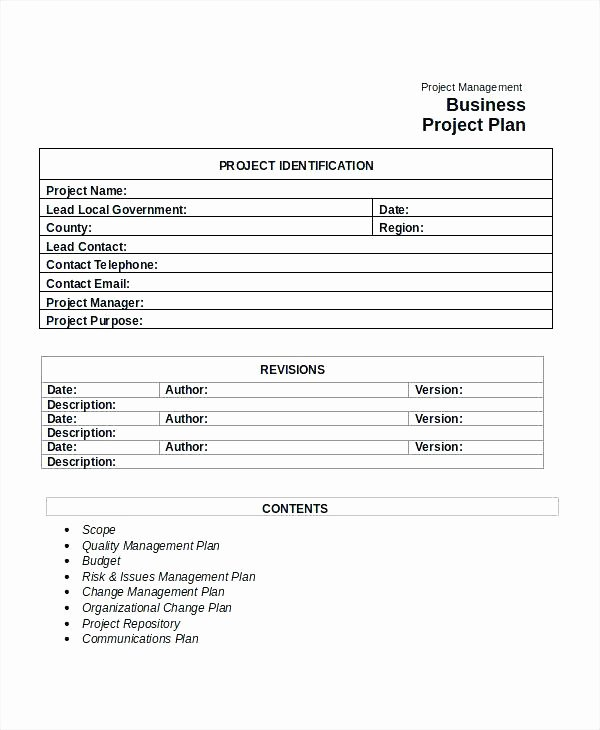 Risk Management Plan Template Pdf Best Of Sample Project Management Plan Pdf Quality Cafe – Grnwav
