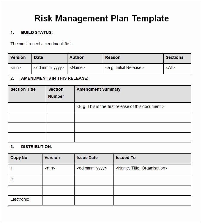 Risk Mitigation Plan Template Lovely Importance Of Having A Risk Management Plan
