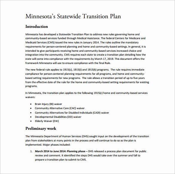 Role Transition Plan Template Best Of 11 Transition Plan Templates – Free Sample Example