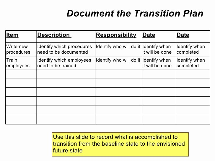 Role Transition Plan Template Lovely Employee Role Transition Plan Template Driverlayer