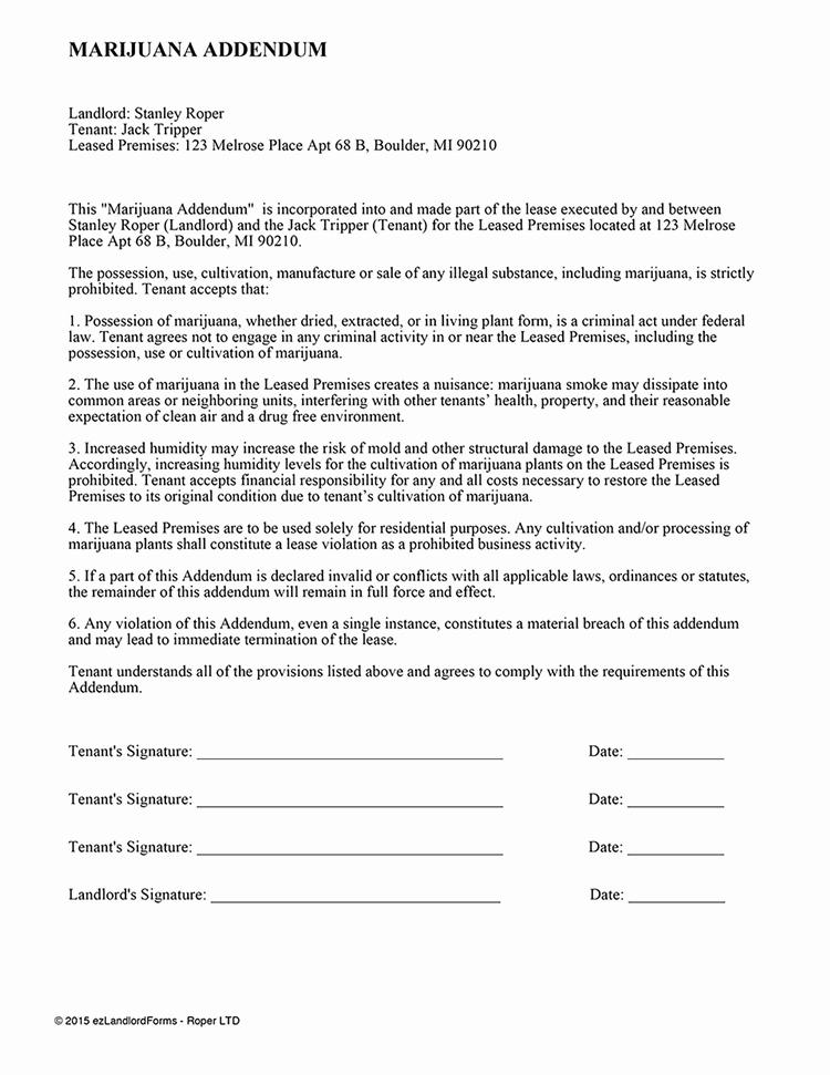Rv Park Rental Agreement Unique 8 9 Contract Addendum Example