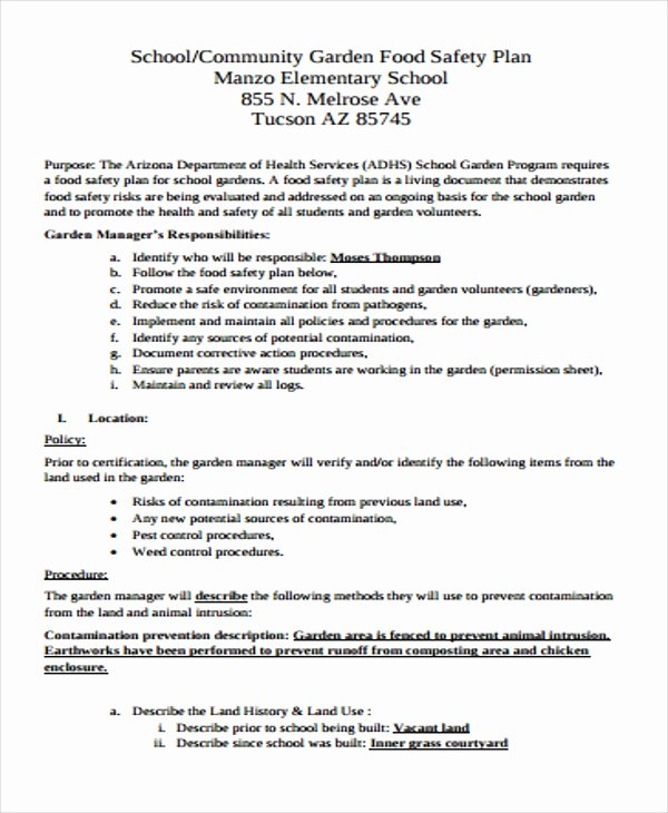 Safety Plan Template for Students Beautiful 30 Safety Plan formats