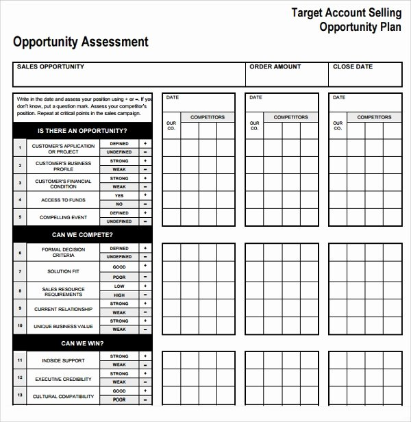 Sales Account Plan Template Awesome Sample Account Plan Template 9 Free Documents In Pdf Word