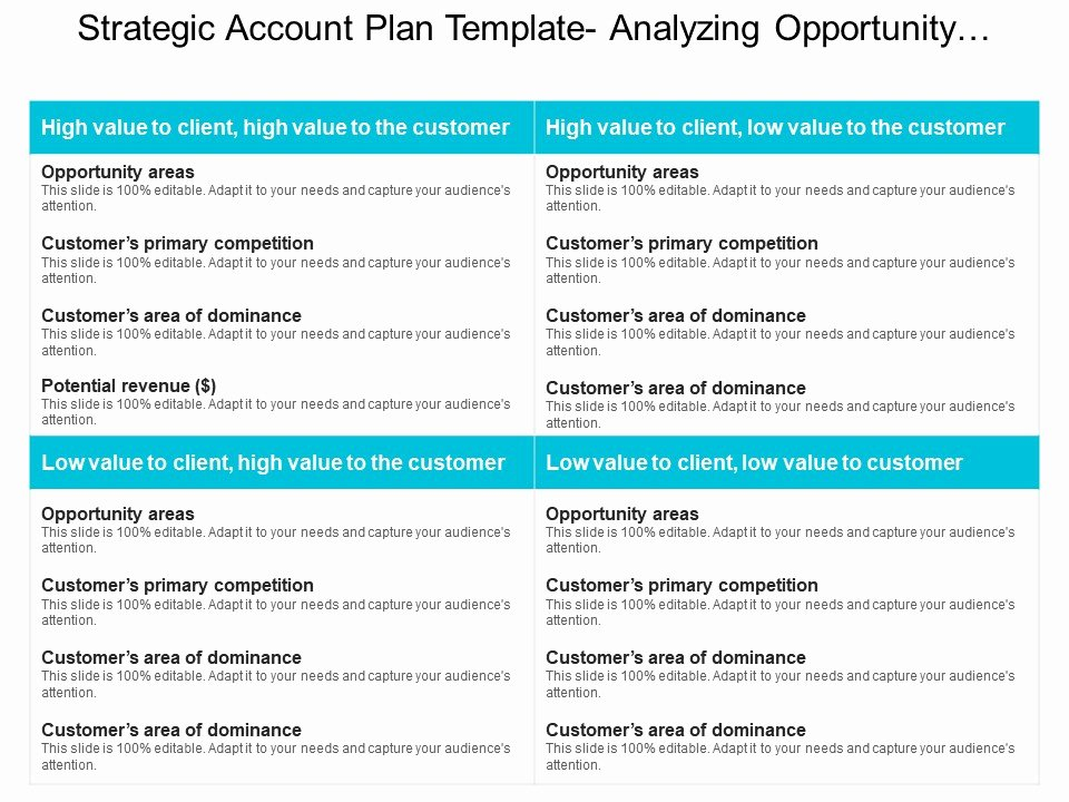 Sales Account Plan Template Beautiful Strategic Account Plan Template Analyzing Opportunity