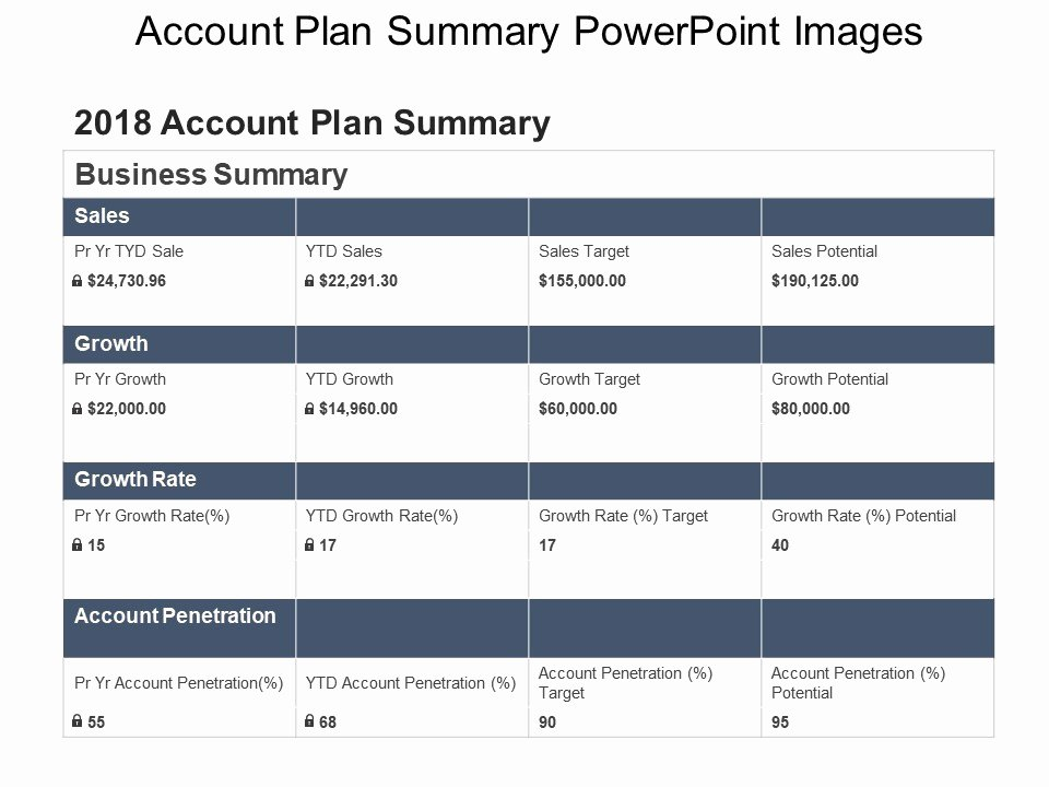 Sales Account Plan Template Lovely Account Plan Summary Powerpoint
