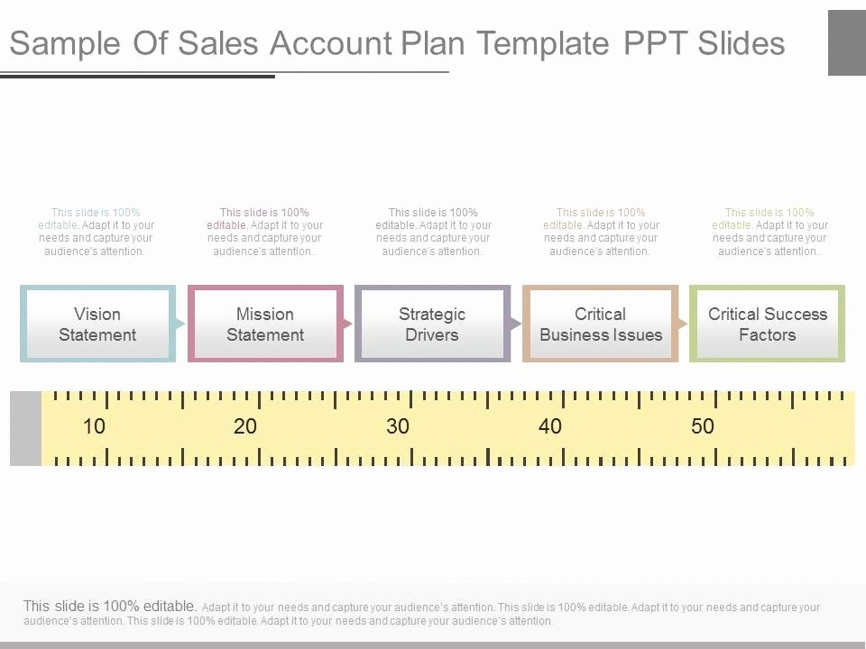 Sales Account Plan Template Luxury Strategic Account Plan Powerpoint Slide Deck