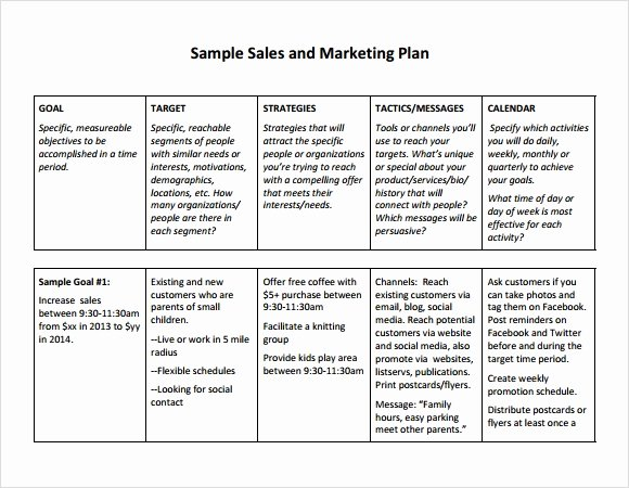 Sales Action Plan Template Lovely Sales Plan Template