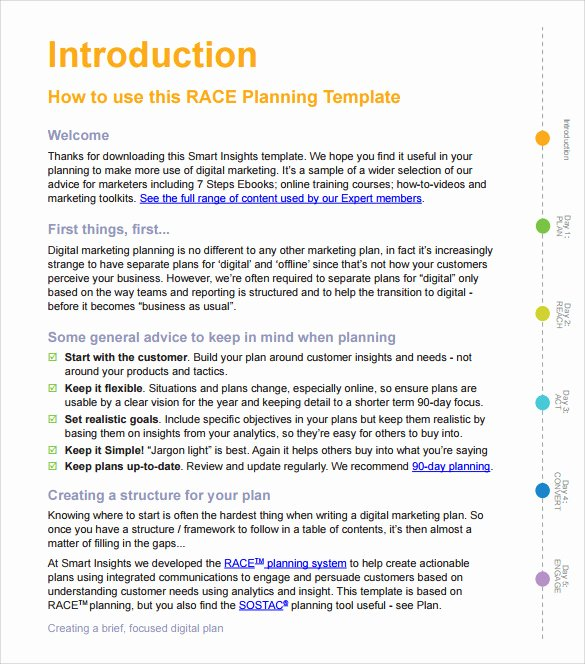Sales Action Plan Template New Sample Sales Action Plan 12 Example format