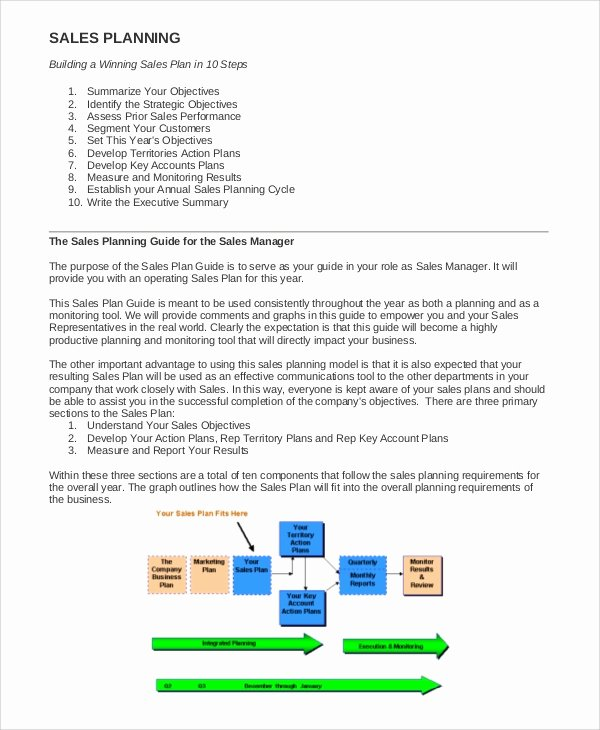Sales Business Plan Template Awesome Sample Sales Plan 9 Documents In Pdf