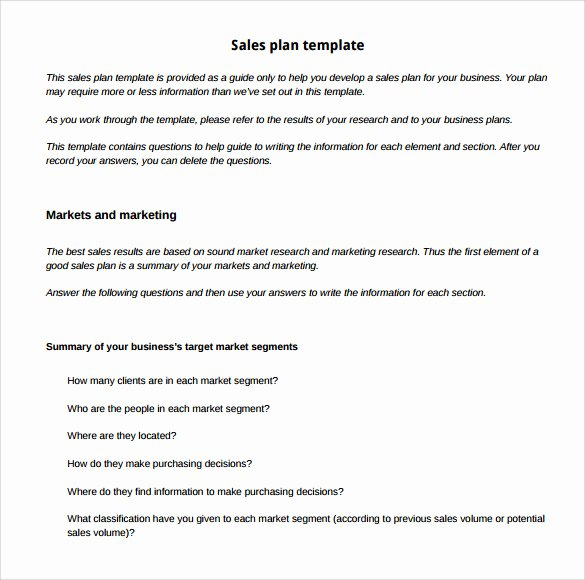 Sales Business Plan Template Lovely 29 Sales Plan Templates Pdf Rtf Ppt Word Excel