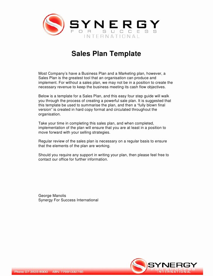 Sales Business Plan Template New Sales Plan Template