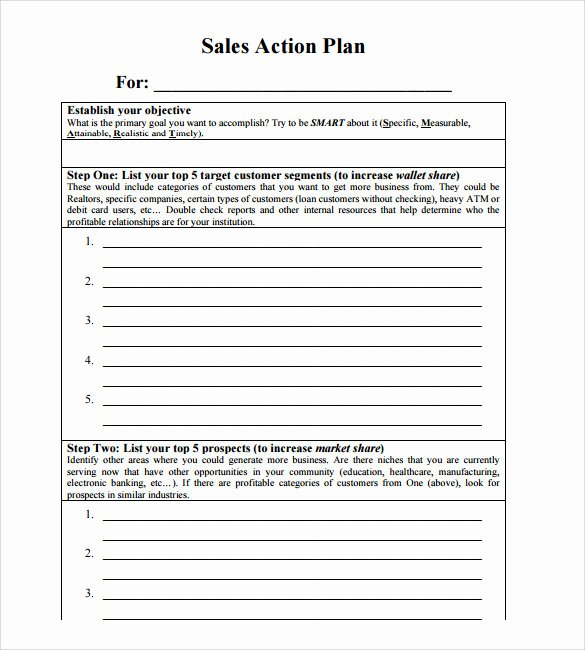 Sales Business Plan Template New Sample Sales Action Plan 12 Example format