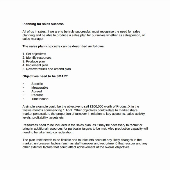 Sales Business Plan Template Unique 29 Sales Plan Templates Pdf Rtf Ppt Word Excel