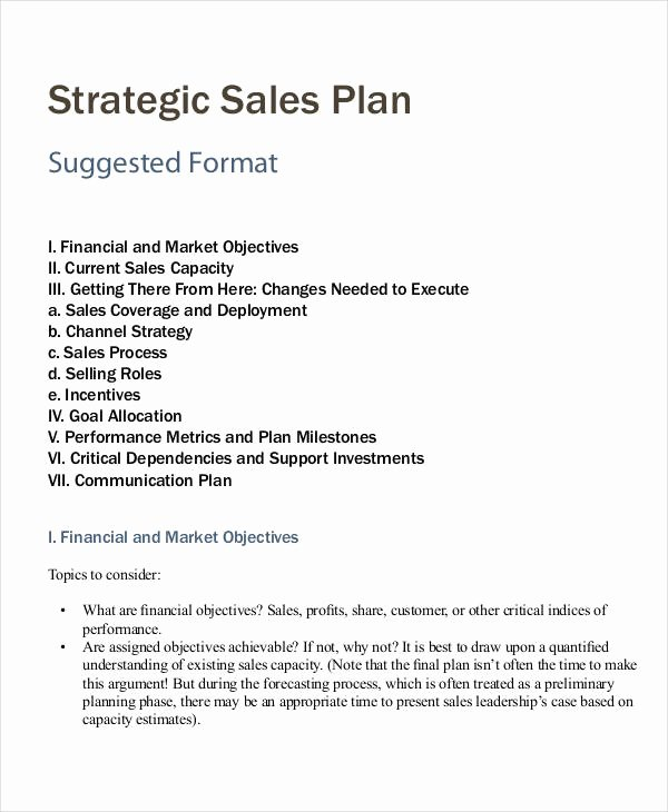 Sales Business Plan Template Unique Personal Sales Plan Templates 5 Free Pdf format