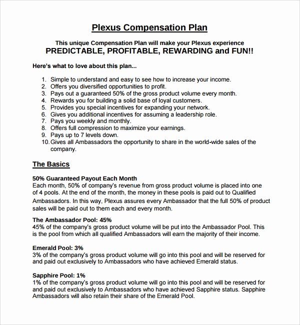 Sales Compensation Plan Template Beautiful Sample Pensation Plan Template 8 Free Documents In
