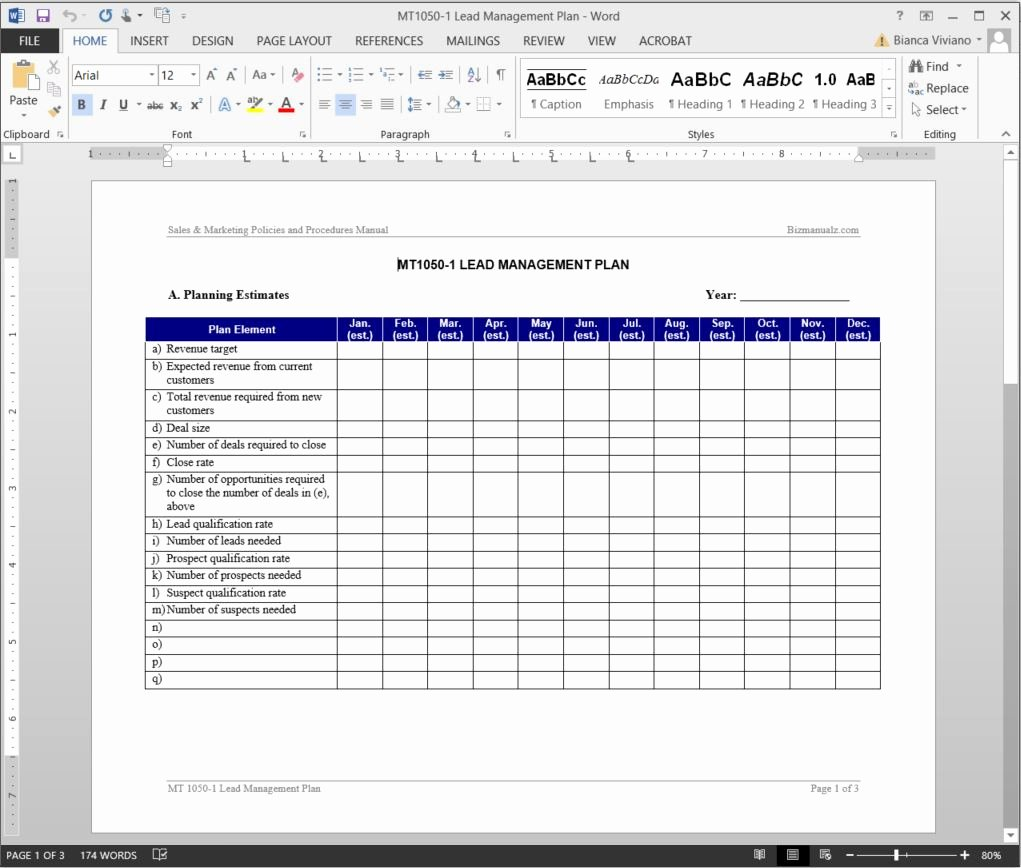 Sales Manager Business Plan Template Luxury Lead Management Plan Template