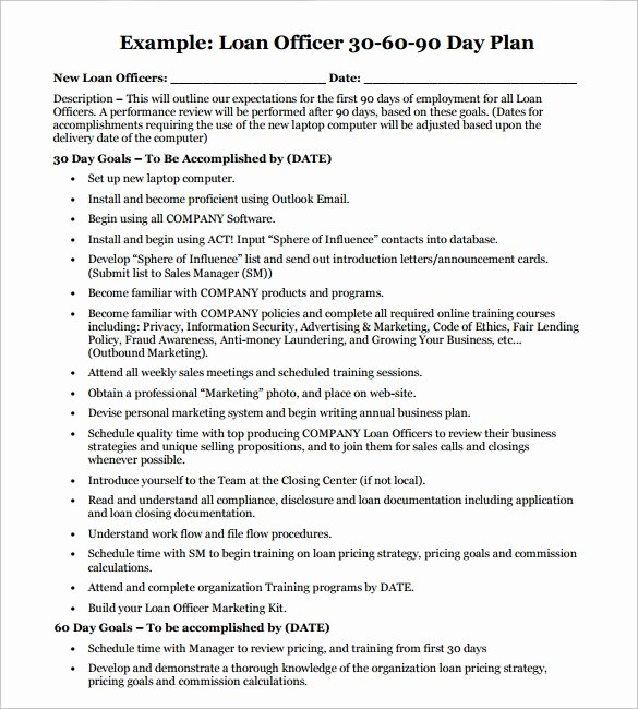 Sales Manager Business Plan Template Luxury Sample 90 Day Plan 14 Documents In Pdf Word