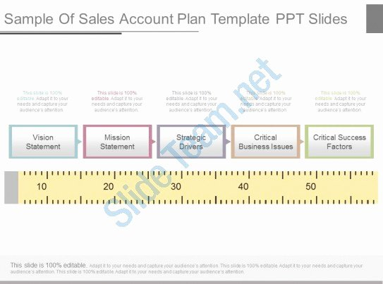 Sales Plan Template Ppt New View Sample Sales Account Plan Template Ppt Slides
