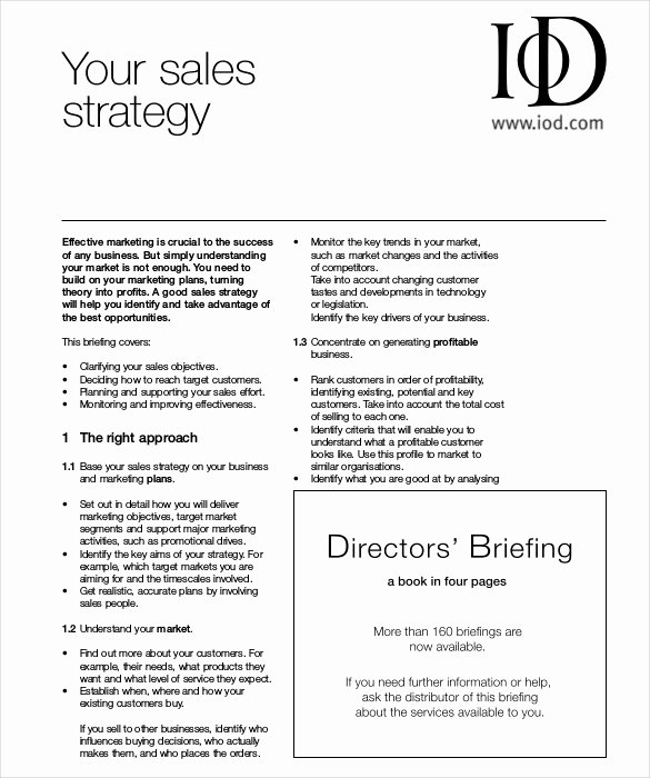 Sales Strategy Plan Template Best Of 13 Sales Strategy Template Doc Excel Pdf