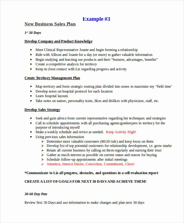 Sales Strategy Plan Template Best Of 25 Sales Plan Examples Pdf Word Pages
