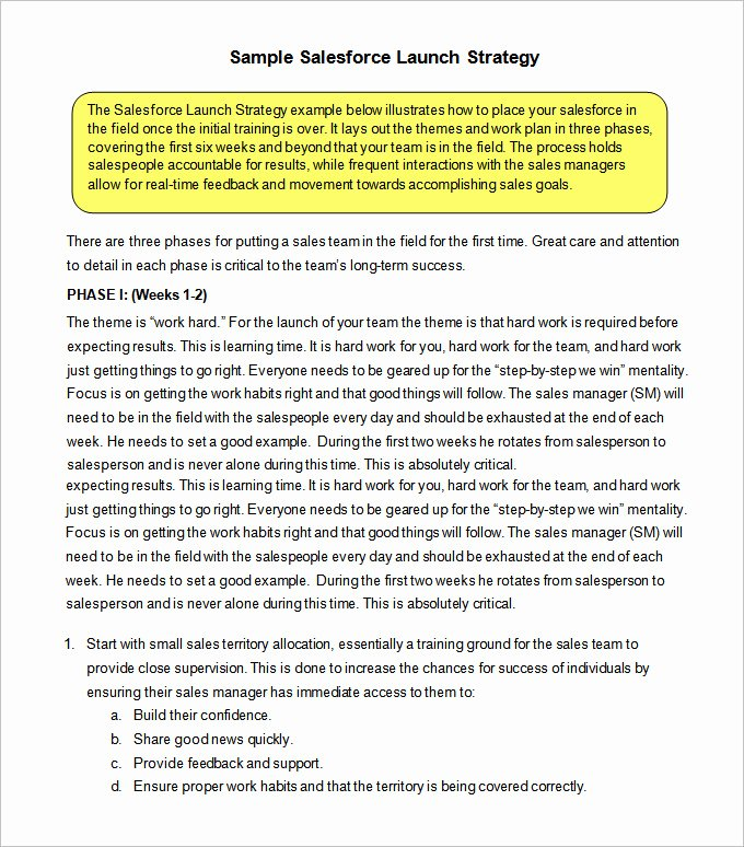 Sales Strategy Plan Template Fresh 12 Sales Strategy Templates Doc Pdf