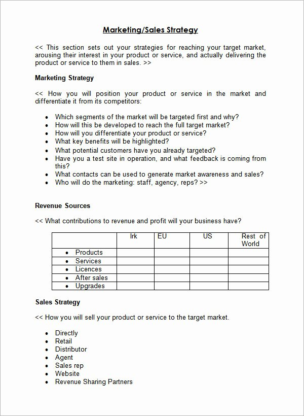 Sales Strategy Plan Template Inspirational 29 Sales Plan Templates Pdf Rtf Ppt Word Excel