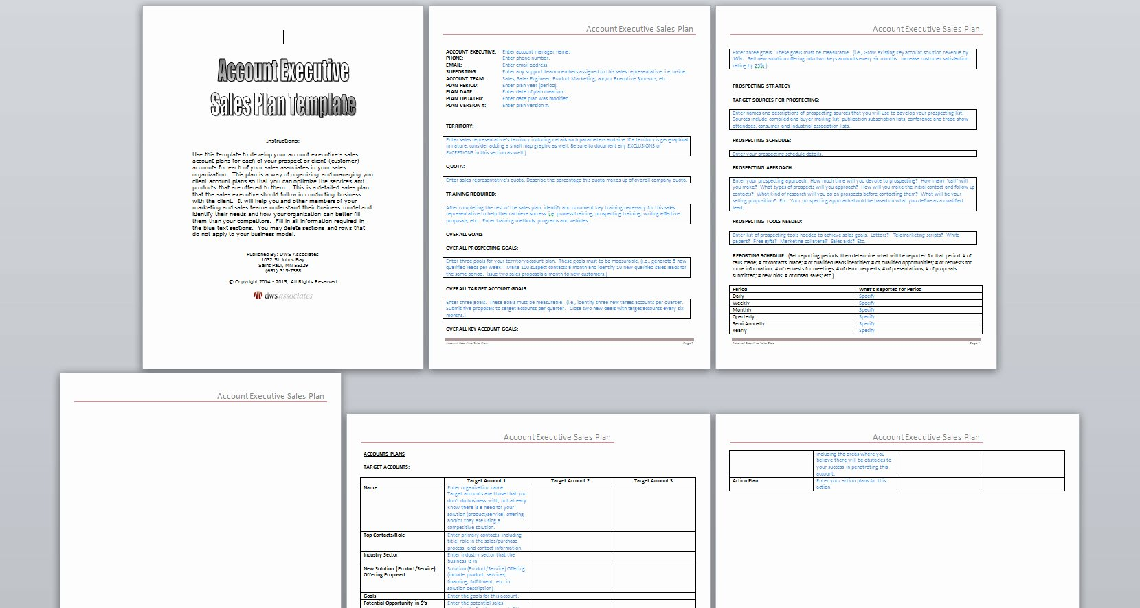 Sales Strategy Plan Template Inspirational Dws associates Account Executive Sales Plan Template
