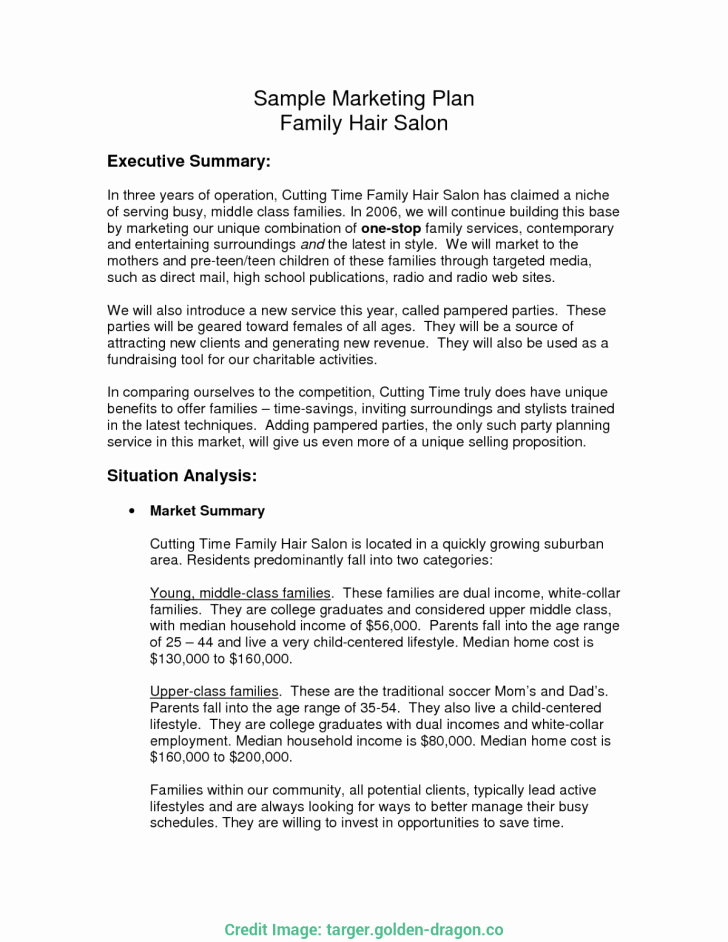 Salon Business Plan Template Beautiful Nail Salon Business Plan Sample