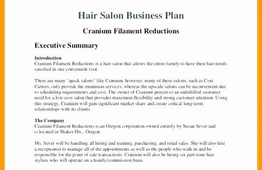 Salon Business Plan Template Elegant Business Plan for Beauty Salon Hair and Beauty Salon