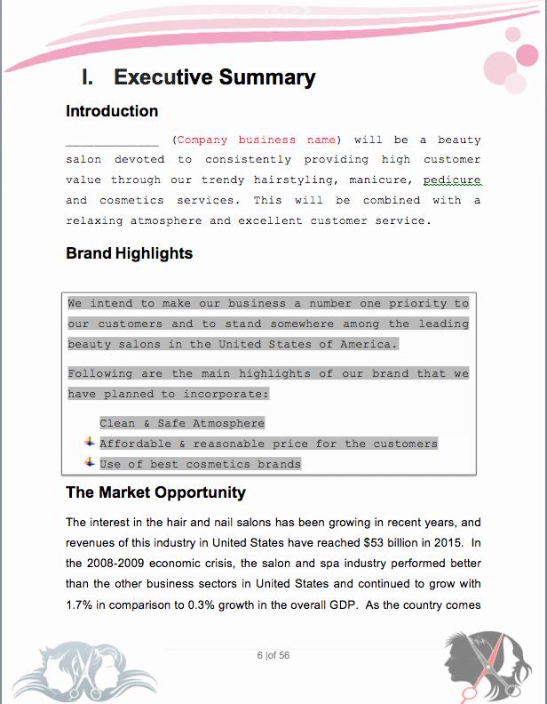 Salon Business Plan Template Inspirational Salon Business Plan Sample Pages Black Box Business Plans