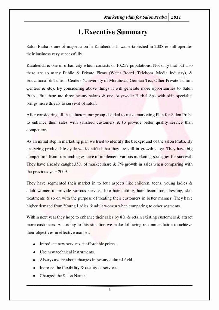 Salon Business Plan Template New Nail Salon Business Plan Sample Writersgroup749 Web Fc2