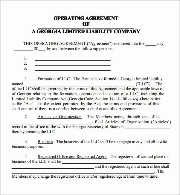 Sample Cottage Llc Operating Agreement Best Of Sample Articles organization Llc Georgia Rusinfobiz