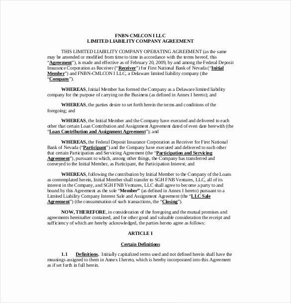 Sample Cottage Llc Operating Agreement Luxury 13 Operating Agreement Templates – Sample Example