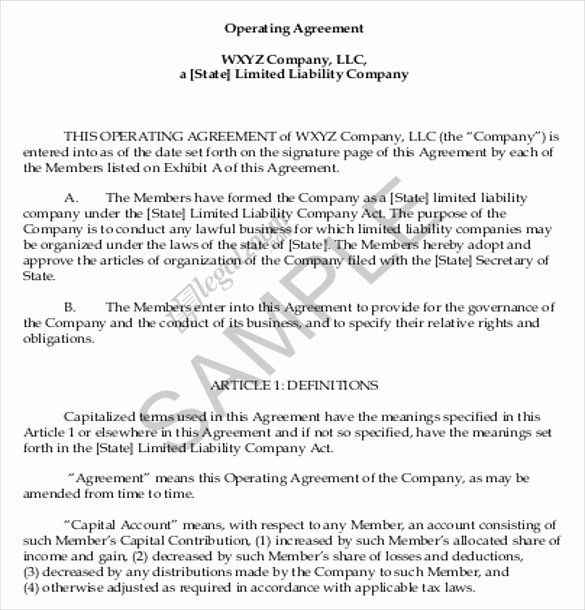 Sample Cottage Llc Operating Agreement New Operating Agreement Template 10 Free Word Pdf Document