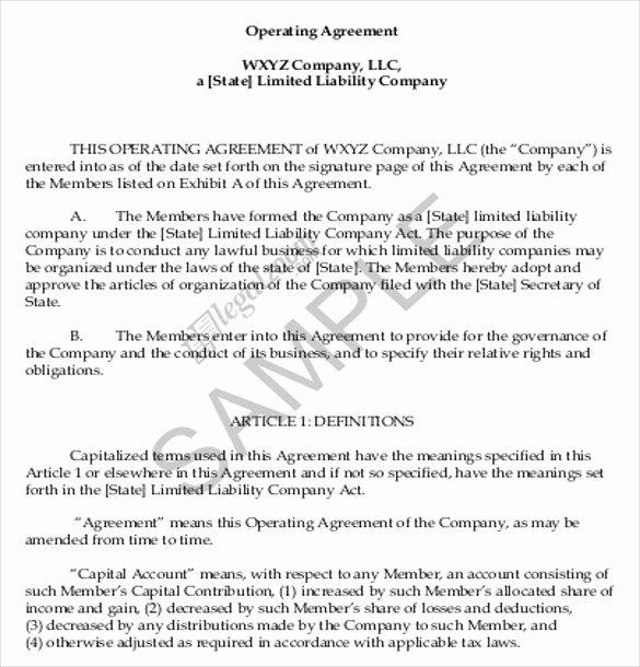 Sample Cottage Llc Operating Agreement New Operating Agreement Template 10 Free Word Pdf Document