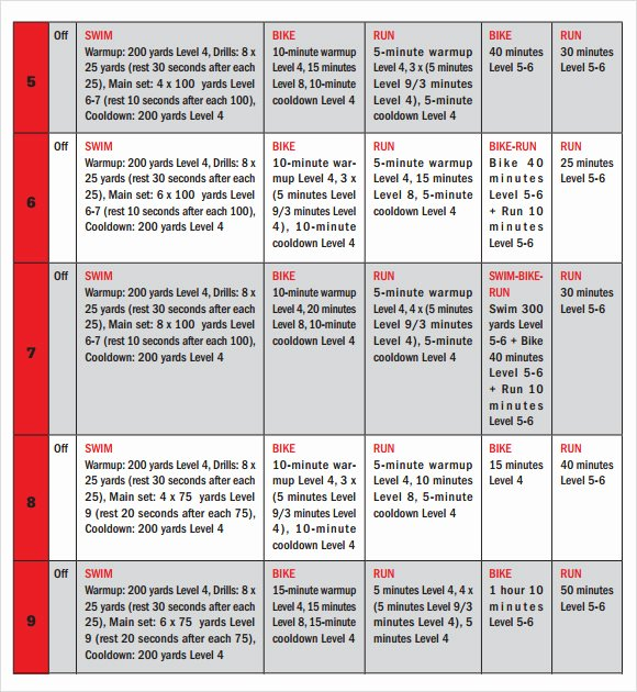 Sample Training Plan Template Awesome Training Calendar Template 11 Free Download for Pdf