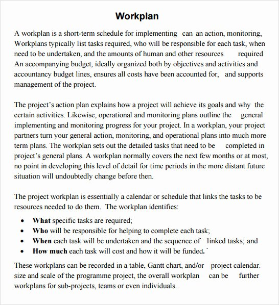 Sample Work Plan Template Beautiful Work Plan Template 20 Download Free Documents for Word